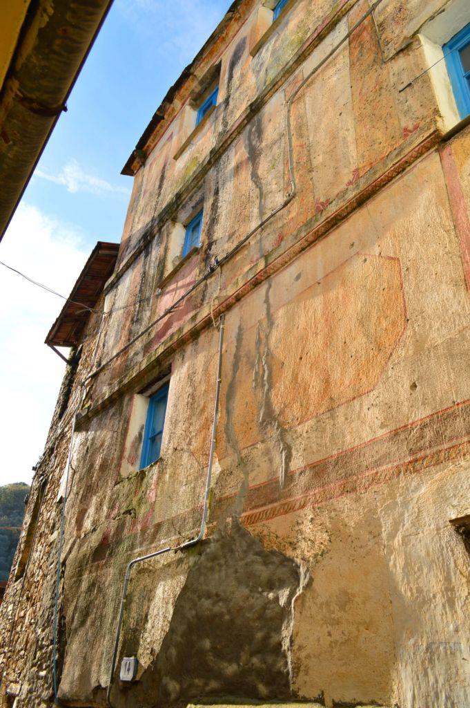 case canonichea