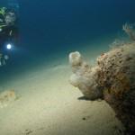 diving 2